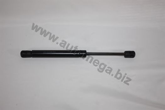 Газовий амортизатор дверi AUTOMEGA 3182705528D5F